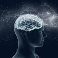 Ученые засняли движение мысли: опубликовано видео