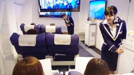 Японский ресторан-самолет предлагает виртуальные путешествия по миру