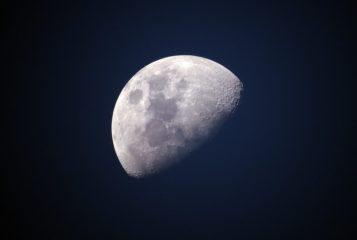 Американка судится с NASA за лунную пыль, подаренную Нилом Армстронгом