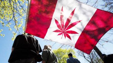 В Канаде легализовали марихуану: топ-5 фактов о неординарном решении