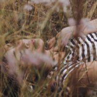 Как выспаться в жару: топ-3 проверенных лайфхака