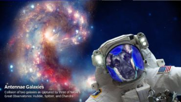 Космическое селфи: NASA выпустило специальное приложение