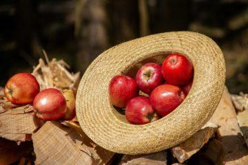 Яблочный Спас 2018: обряды и традиции праздника