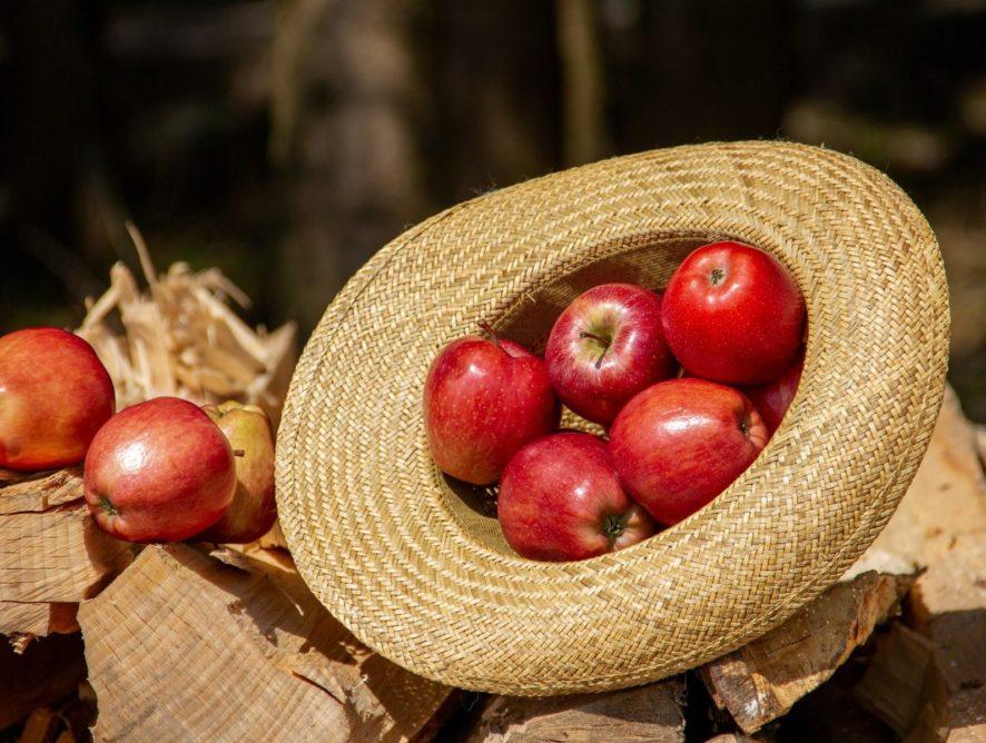 Яблочный Спас 2019: обряды и традиции праздника