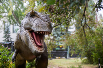 Парк Юрского периода: на ВДНГ вернулись динозавры