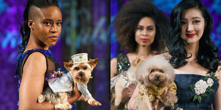 На Неделе моды в Нью-Йорке по подиуму прошлись собаки