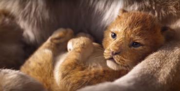 """Как живой: опубликован невероятный трейлер фильма """"Король Лев"""""""