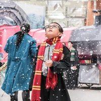 Аэропорт в Сингапуре к праздникам превратили в мир Гарри Поттера