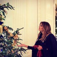 Дональд и Меланья Трамп опубликовали рождественский снимок