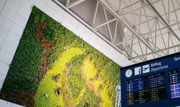 Йога и тихие комнаты: обнародован рейтинг самых здоровых аэропортов мира
