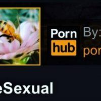 PornHub в благотворительных целях запустил канал с пчелиным порно
