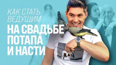 Владимир Остапчук преследовал NK в надежде провести ее свадьбу