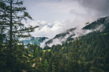 Идея для отпуска: Лихтенштейн