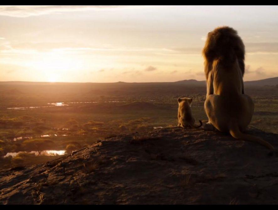 """Больше, чем кино: 5 причин посмотреть фильм """"Король Лев"""""""
