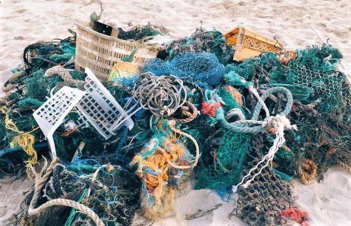 Украина присоединится к международной пляжной уборке