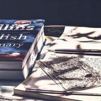 Британский словарь Collins назвал слово 2019 года