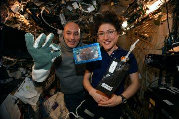 Космическое печенье: на МКС впервые сделали выпечку