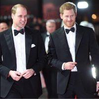 Принцы Гарри и Уильям снова поддерживают связь — королевский эксперт