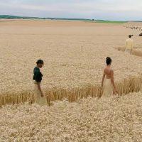 Мягкие тона и мотивы Пикассо: Jacquemus устроили показ посреди пшеничного поля