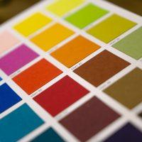 Главные цвета осень-зима 2020/21: Pantone выбрал ключевую палитру оттенков