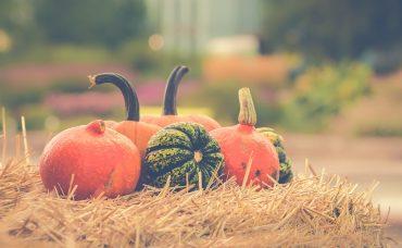 Полезная сладость: Елизавета Глинская поделилась рецептом цукатов из тыквы