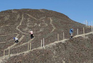 В Перу обнаружили огромное древнее изображение кошки