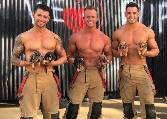 В компании коал и кенгуру: австралийские пожарные снялись для нового календаря