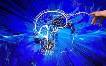 Ментальне здоров'я і суперможливості мозку: у Києві відбудеться конференція Brain Ukraine 2021